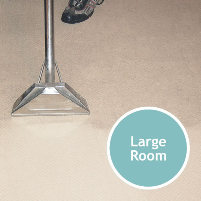CARPET CLEANING Large Room