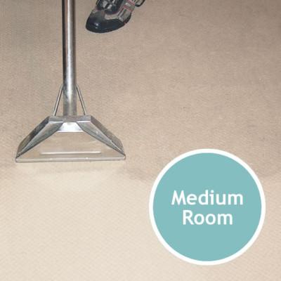 CARPET CLEANING Medium Room